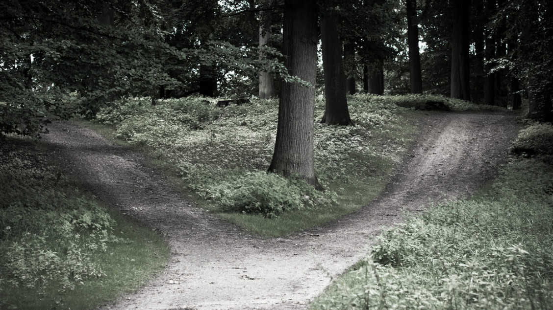 every once in a while in your life you reach a decision point. a crossroad leading left or right. you can not look far enough to make the perfect step, but you have to decide anyways. is it left or right? or even turning back?