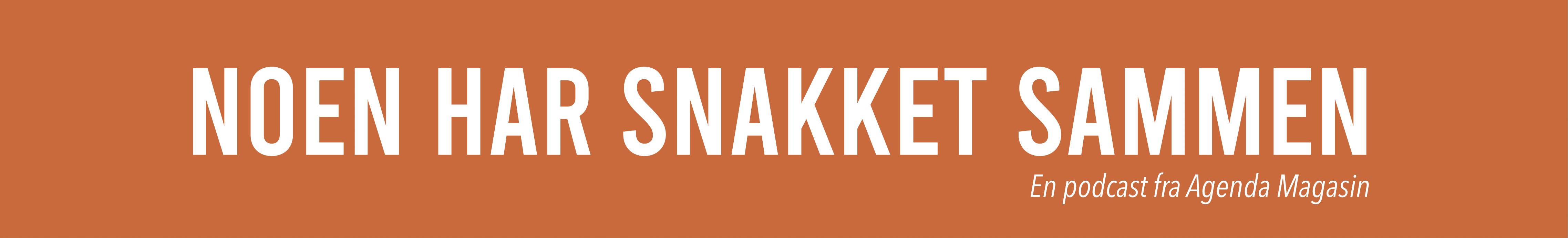 smalt banner ny logo
